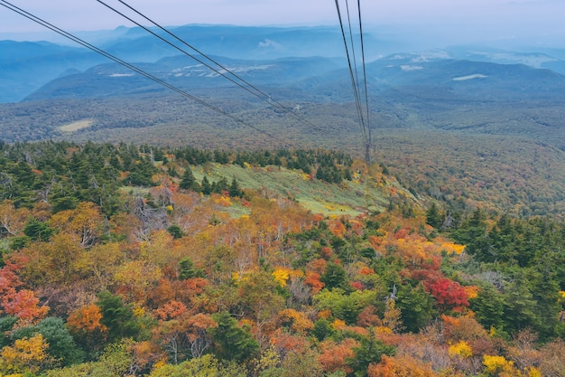 Aerial view of red leaf autumn fall season for forest woodland from hakkoda mountain with hakkoda ropeway in aomori tohoku japan