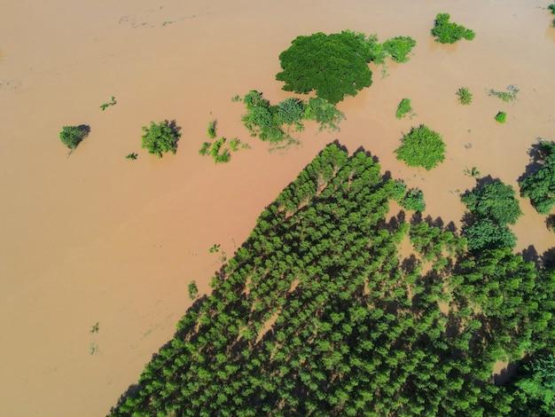 공중보기 강 홍수 숲 자연 삼림 지역 녹색 나무 농지 농업, 위에서 물 범람이있는 탑 뷰 강 석호 연못, 야생 물이 흐르는 정글 호수를 흐르는 성난 강