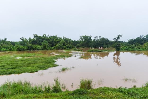 공중 보기 강 범람 숲 자연 삼림 지역 녹색 나무, 위에서 물 범람이 있는 탑 뷰 강 석호 연못, 비 후 야생 물이 흐르는 풍경 정글 호수