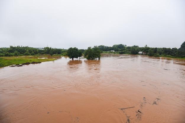 空撮川洪水森林自然森林地帯緑の木、上から水が氾濫する上面図川ラグーン池、雨の後に野生の水を流れるジャングル湖を流れる荒れ狂う川