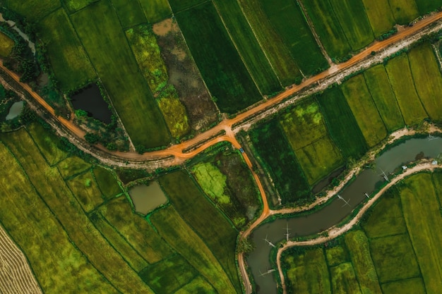 Aerial view of road and devious river in a fields