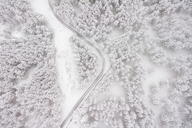Aerial view on the road and forest at the winter time. snowy forest, natural winter landscape.