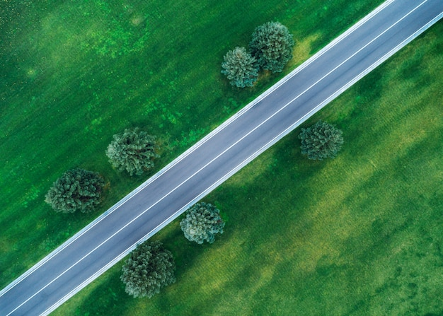Aerial view of road through beautiful green field in the evening in spring