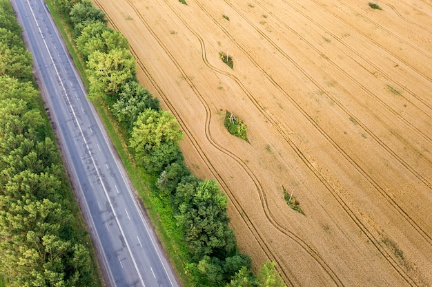 Aerial view of a road between yellow wheat fields and green trees.