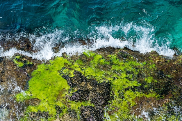 Aerial view rock in the sea