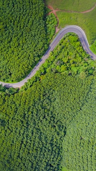 Aerial view of rural road in countryside area, view from drone