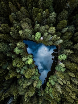 Aerial view of small blue alpine lake in the green pine forest near a lake