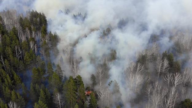 山火事の空中写真の煙。
