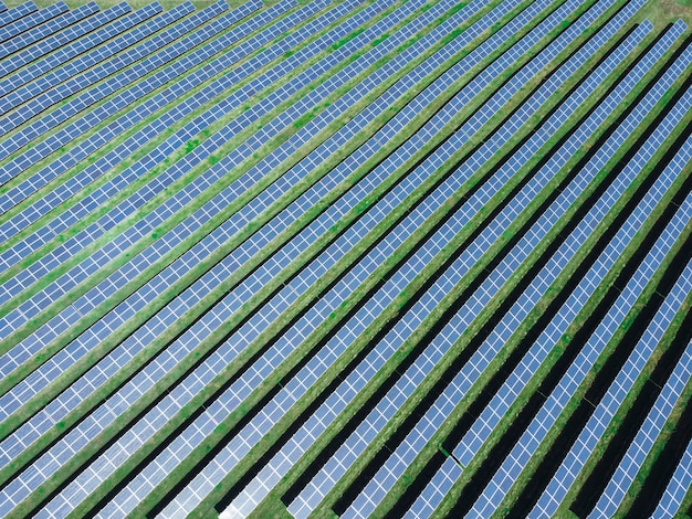 Aerial view of solar power plant. renewable energy theme. solar panels from above. the concept of ecological renewable energy.