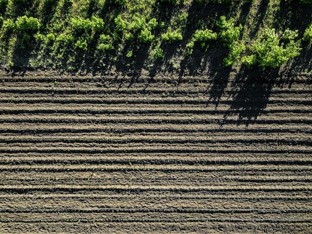 春の晴れた日に播種され耕作された畑の空中写真は、木の影が地面に映ります。