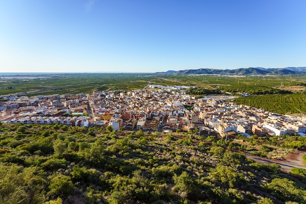 Aerial view on a sunny day of a city surrounded by orange-tree fields.