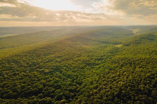 공중 보기 드론은 열대 우림 위를 날아다니며 푸른 숲 위로 멋진 일몰을 감상할 수 있습니다.