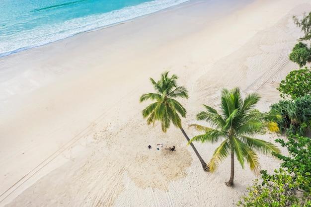 空撮上面図白い砂のココナッツ椰子の木と海のある美しい話題のビーチ