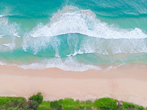 Aerial view top view beautiful topical beach with white sand coconut palm trees and sea. top view empty and clean beach. waves crashing empty beach from above.