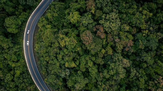 Aerial view over tropical tree forest with a road going through with car, forest road.