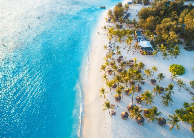 Aerial view of umbrellas, green palms on the sandy beach at sunset. summer holiday in zanzibar, africa. tropical landscape with palm trees, parasols, white sand, blue water, waves, people. top view