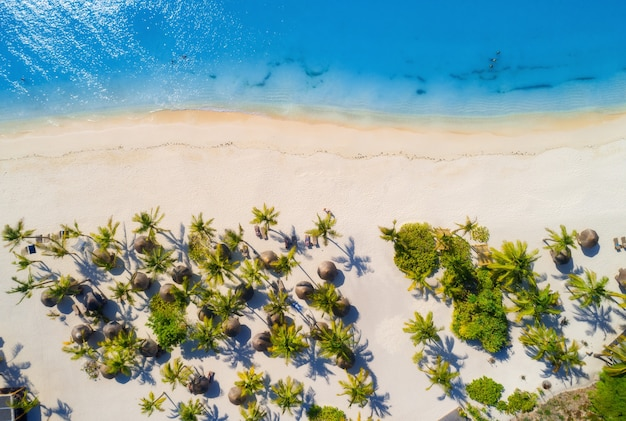 Aerial view of umbrellas, palms on the sandy beach of indian ocean at bright sunny day. summer holiday in africa. tropical seascape with green palm trees, parasols, boats, yachts, blue water. top view