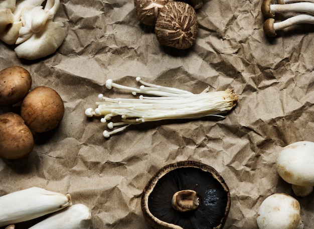 Aerial view of various fresh organic mushroom set collection