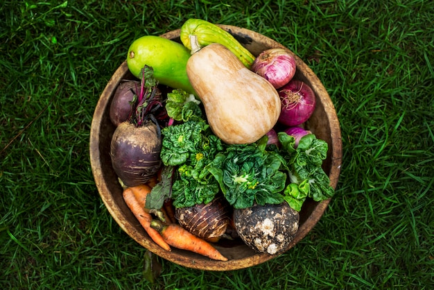 Aerial view of various fresh organic vegetable in wooden bowl