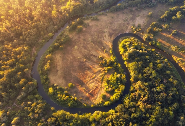 Aerial view of a winding river at dawn in summer.