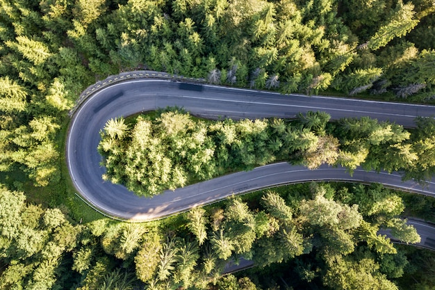 Aerial view of winding road in high mountain pass trough dense green pine woods.