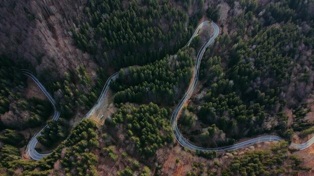 Vista aerea di una strada tortuosa circondata da verdi e alberi
