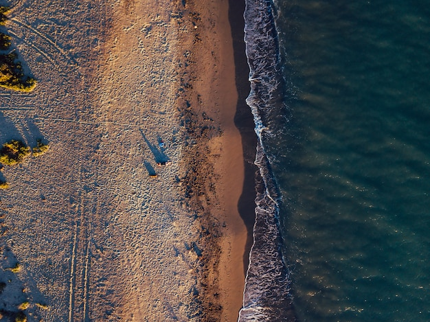 Aerial views of a girl with her dog at a virgin beach, in natural park punta entinas, almeria, spain