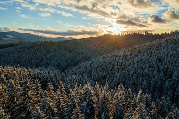 雪の小枝の木が夕方に冷たい山の森に覆われた空中冬の風景。