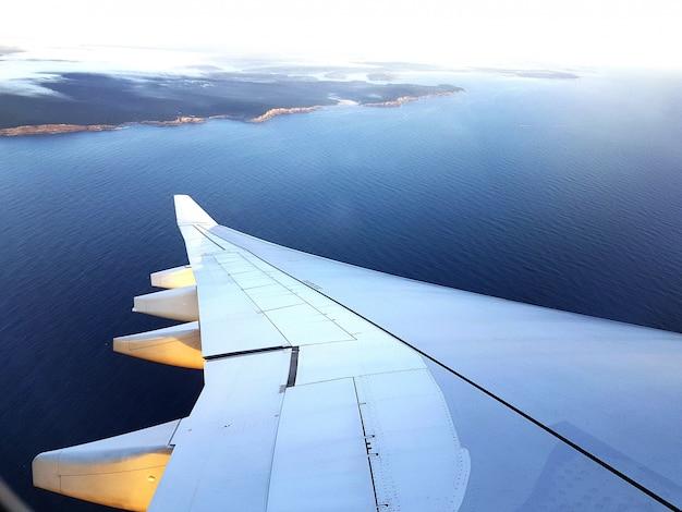 Aeroplane wing with sea scene