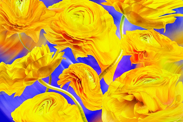 審美的な背景の壁紙、黄色い花のトリッピーな抽象的なデザイン