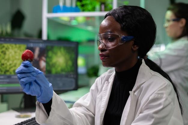 유기농 딸기를 들고 있는 아프리카계 미국인 생물학자