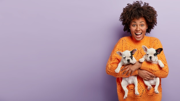 African american woman wearing orange sweater holding puppies
