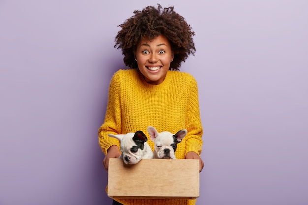 African american woman wearing yellow sweater holding puppies