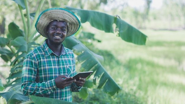 African farmer is happily working on his organic banana plantation farm with using tablet.agriculture or cultivation concept