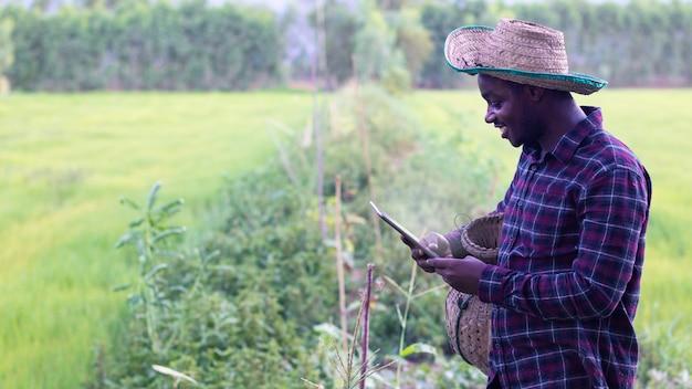 アフリカの農家は、タブレットを使用して自分の農場で楽しく働いています。農業または栽培の概念