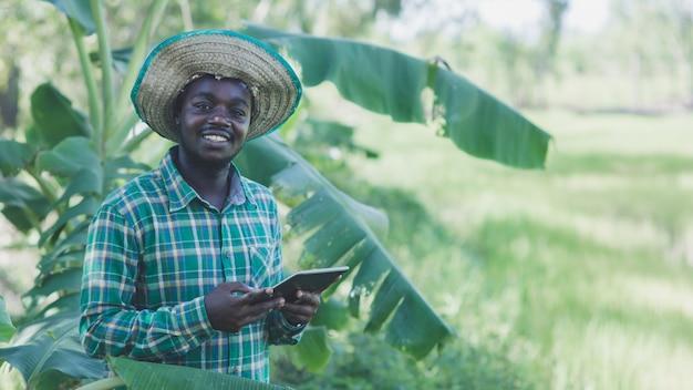 アフリカの農家は、タブレットを使用して有機バナナ農園で楽しく働いています。農業または栽培の概念
