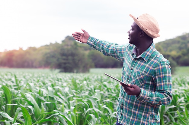 African farmer stand in the green farm with holding tablet