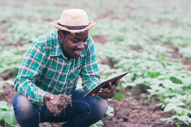 Африканский фермер, использующий планшет для исследования почвы на органической ферме. концепция сельского хозяйства или выращивания