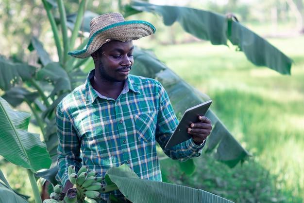 有機農場でバナナを保持しているタブレットを使用しているアフリカの農家。農業または栽培の概念