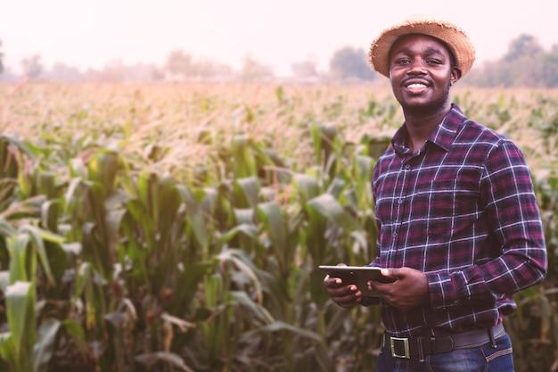帽子をかぶったアフリカの農民がトウモロコシ農園の畑に立つ