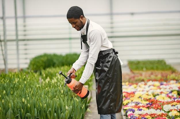 African gardener guy. gardener with a watering can. flower beds.
