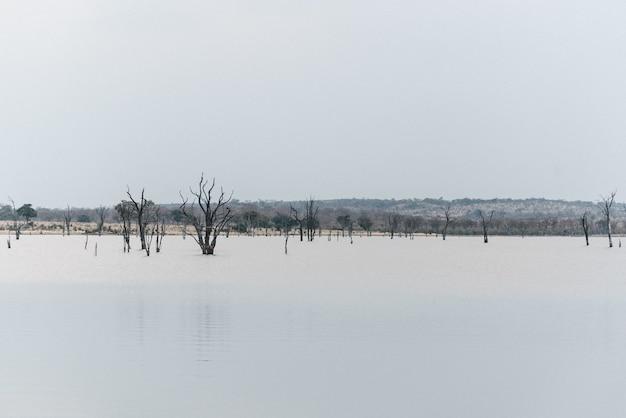 Африканское озеро