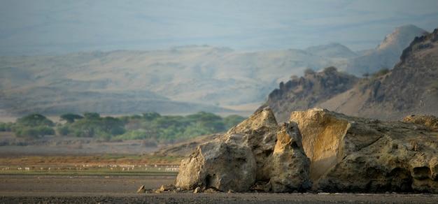 アフリカの風景、タンザニア