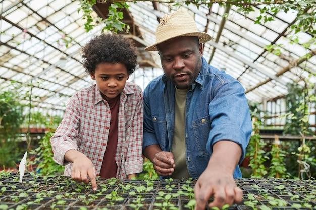 그의 아들과 함께 온실에서 일하는 아프리카 남자