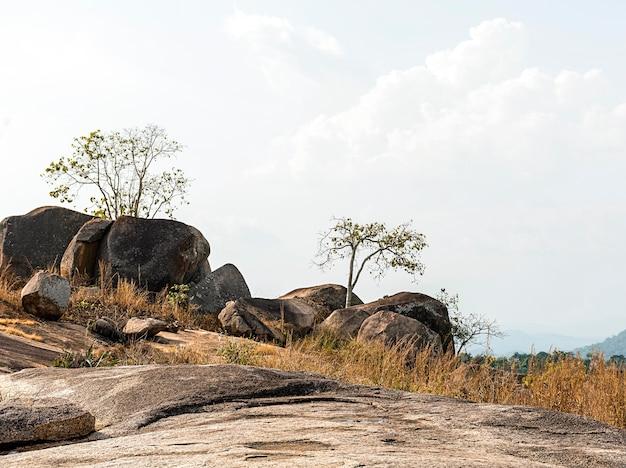 Scenario della natura africana con cielo sereno e rocce