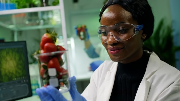 African researcher looking at glass with healthy strawberry examining ecology test. in background her collegue checking injected fruits while working in microbiology laboratory