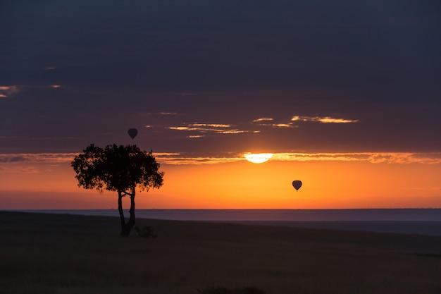 アフリカの日の出と熱気球