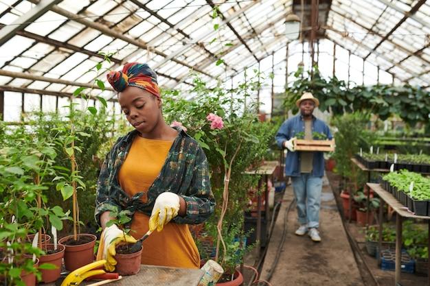 バックグラウンドで苗を運ぶ男と温室で若い植物を植えるアフリカの女性