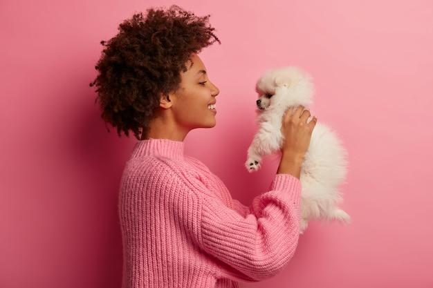 Афроамериканка поднимает на руки маленького щенка, с удовольствием смотрит на миниатюрного питомца, носит вязаный свитер, играет дома, изолирована на розовом фоне