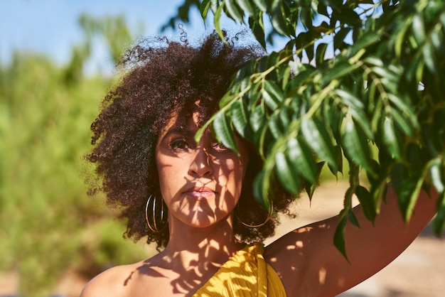 Afro woman holds some branches near her face. the shadow of the leaves is cast on his face. ecology, nature concept.